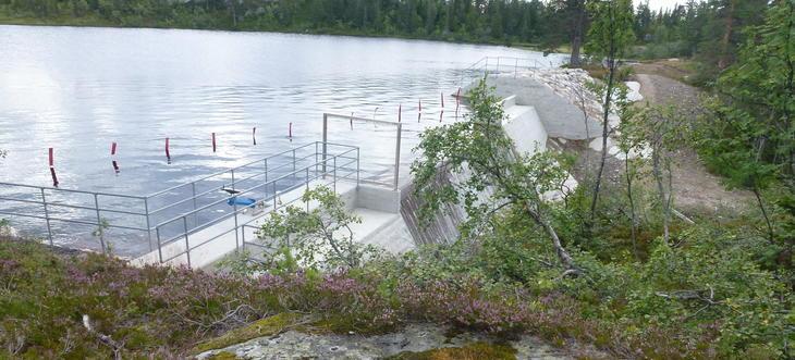 Fiskeløysa dam